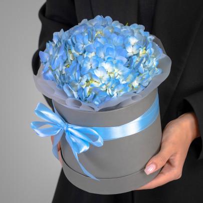 1 Голубая Гортензия в коробке фото