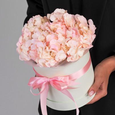 1 Розовая Гортензия в коробке фото