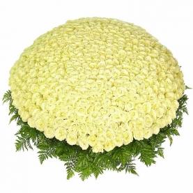1001 Белая Роза фото