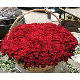 1001 Красная Роза (40 см.) фото
