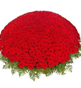 1001 Красная Роза (50/60 см.) фото