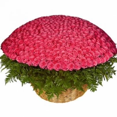 1001 Розовая Роза (50 см.) фото