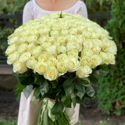 101 Белая Роза (80 см.) фото