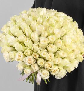 101 Белая Роза фото
