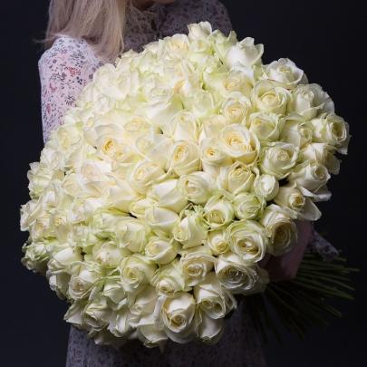 101 Белая Роза Premium (50/60 см.) фото
