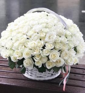 101 Белая Роза (50 см.) в корзине