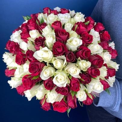 101 Бело-Красная Роза (40 см.) фото