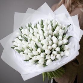 101 Белый Тюльпан в пленке фото