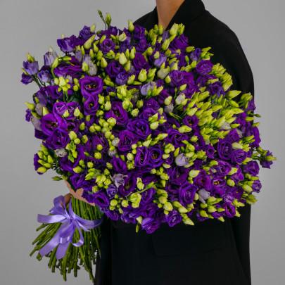 101 Фиолетовая Эустома фото