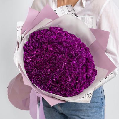101 Фиолетовая Гвоздика фото