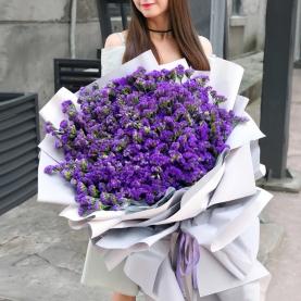 101 Фиолетовая Статица фото