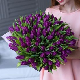 101 Фиолетовый Тюльпан фото