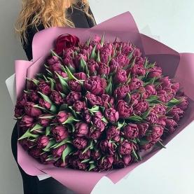 101 Фиолетовый Пионовидный Тюльпан фото