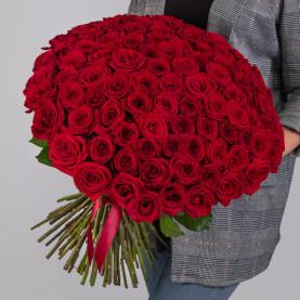101 Красная Роза (50 см.) фото