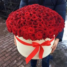 101 Красная Роза (50 см.) в коробке фото