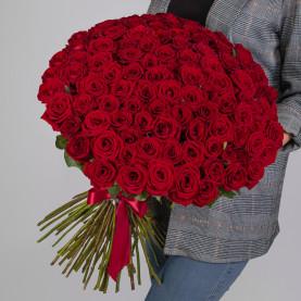 101 Красная Роза (60 см.) фото