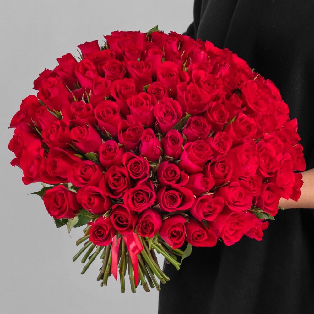 101 Красная Роза фото