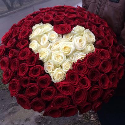 101 Красная и Белая Роза (60 см.) сердце  фото