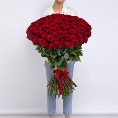 101 Красная Роза (100 см.) фото