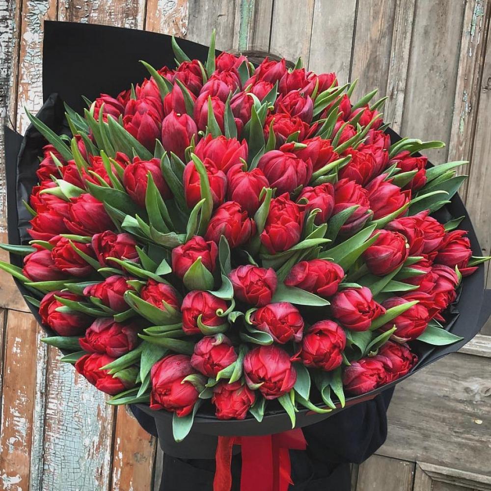 101 Красный Пионовидный Тюльпан  фото