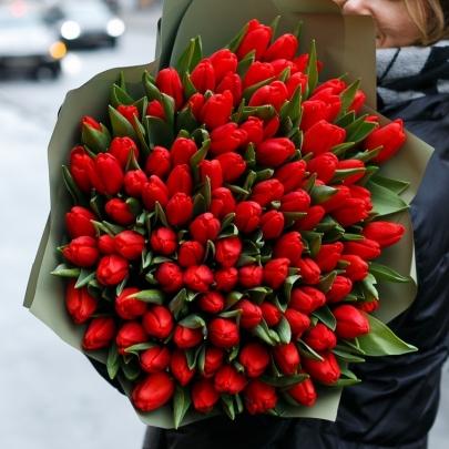 101 Красный Тюльпан в пленке фото
