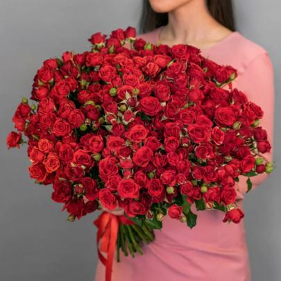 101 Кустовая Красная Роза (50 см.) фото