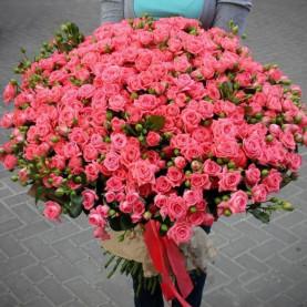 101 Кустовая Розовая Роза (60 см.) фото