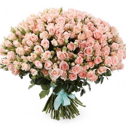 101 Кустовая Светло-Розовая Роза (50 см.) фото
