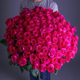 101 Малиновая Роза (60 см.)