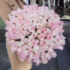 101 Нежно-Розовая Роза (60 см.)