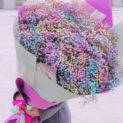 101 Разноцветная Гипсофила фото