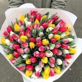 101 Разноцветный Тюльпан в упаковке фото