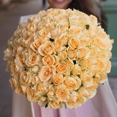 101 Роза персиковая фото