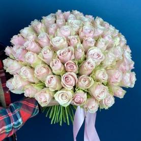 101 Розово-Белая Роза (40 см.)