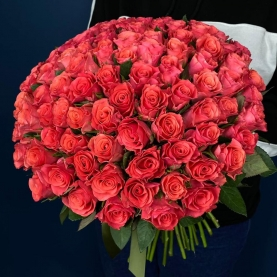 101 Роза Pink Tacazzi фото