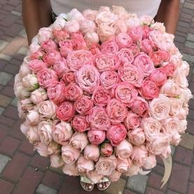 101 Пионовидная Розовая Роза (50 см.) сердце
