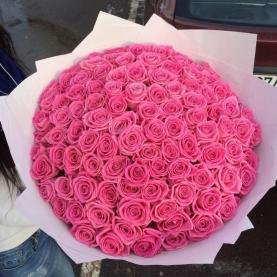 101 Ярко-Розовая Роза (50 см.)