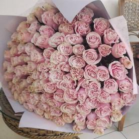 101 Розово-Белая Роза (50 см.)