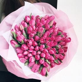 101 Розовый Тюльпан в пленке фото