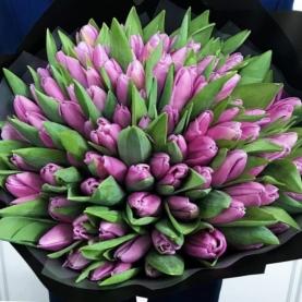 101 Сиреневый Тюльпан фото