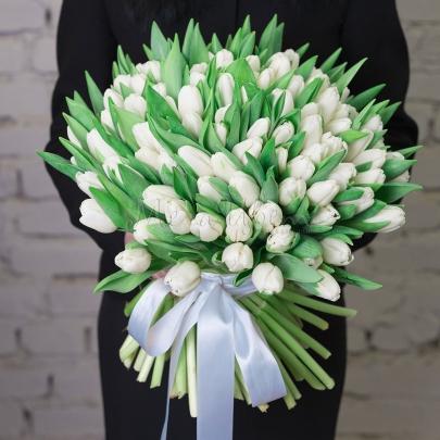 101 Тюльпан белый фото