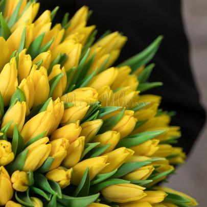 101 Тюльпан желтый фото
