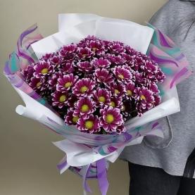 11 Ярких Кустовых Хризантем фото