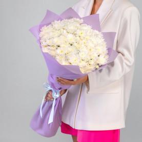 11 Белых Кустовых Хризантем фото