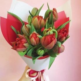11 Красных Пионовидных Тюльпанов фото