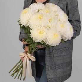 11 Кремовых Хризантем Бигуди фото