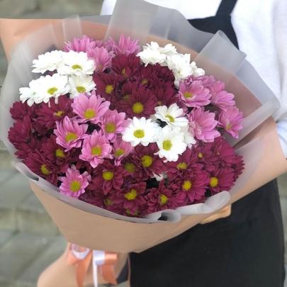 11 Разноцветных Кустовых Хризантем фото
