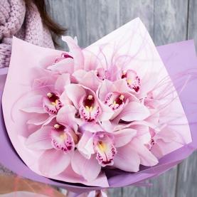 11 Розовых Орхидей фото
