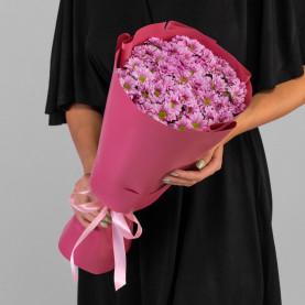 11 Розовых Сантини Ромашка фото