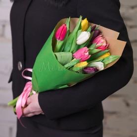 11 Разноцветных Тюльпанов фото